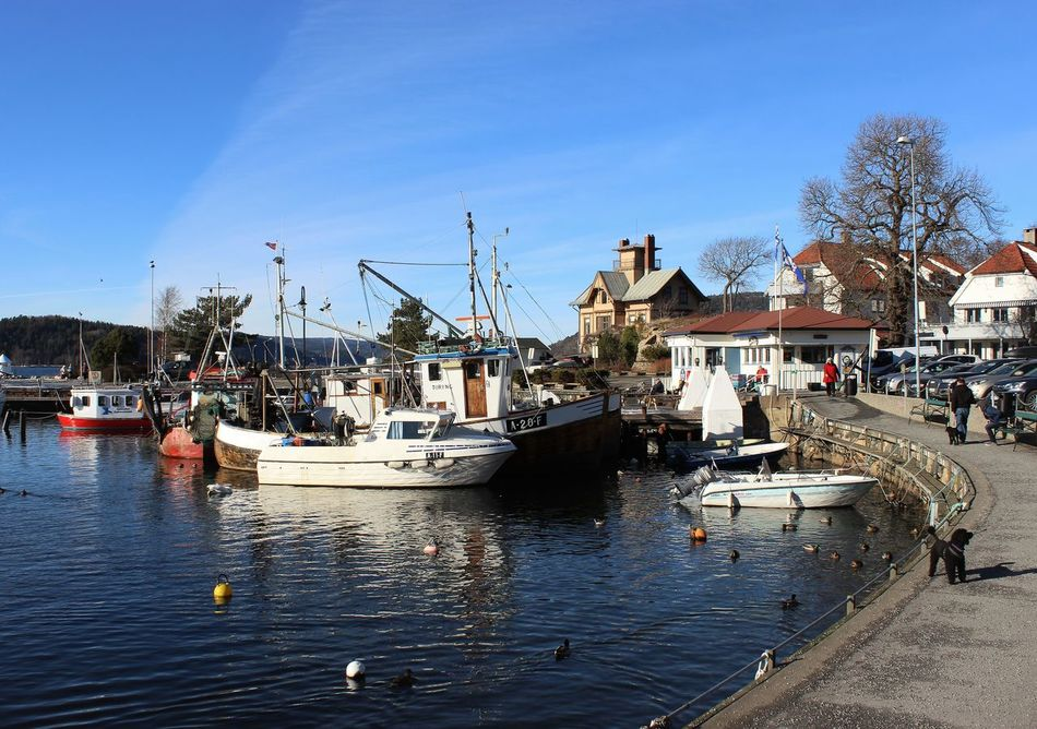 Drøbak Harbour Harbour View Reflection Water Oslofjord Outdoors Travel Destinations Sky Reflection Sunlight Norway EyeEm Sea_collection Sea View Sailboats Boats Day Sea Panoramic Scenics Winter Horizon Over Water