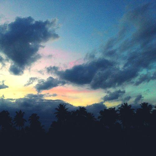 Sunset Sun Dreaming Of You EyeEm Best Shots