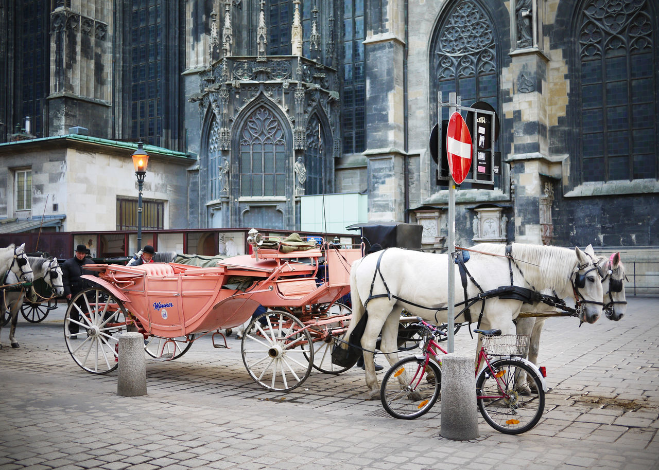 2009 Austria City Domestic Animals Horse Horse Cart Horse Drawn Carriage Outdoors Street Vienna ウィーン オーストリア 道 馬 馬車 Wien