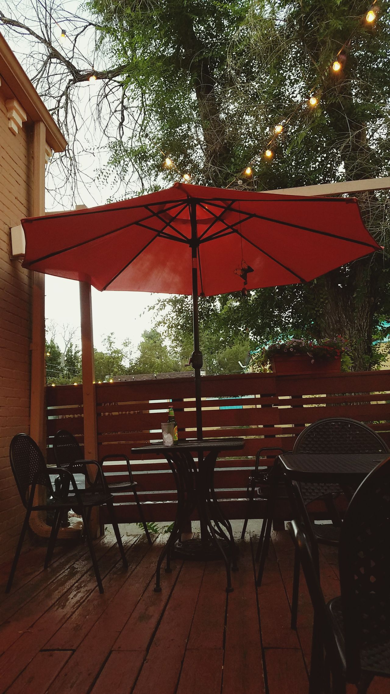 Tree Chair No People Outdoors Day Nature Sky Table Lights Summer Porch Orange Orange Umbrella Restaurant Outdoor Restaurant