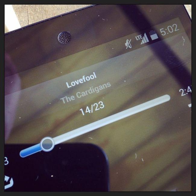 Music Cardigans LoveFool カーディガンズ 何年聴いても飽きないね…???