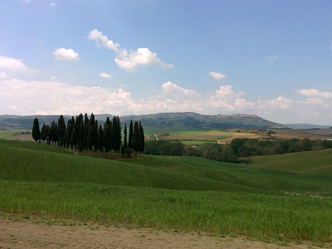 Cypress hill Holiday Relax Valdorcia Toscana