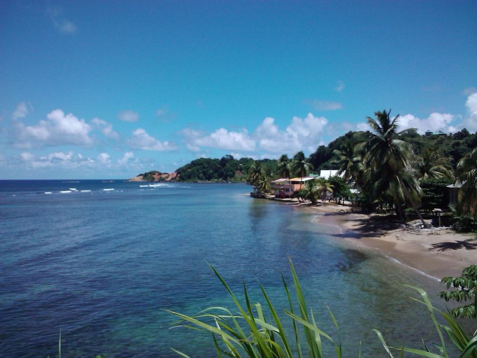 Calibishie Beach Beach Beautiful Day Beauty In Nature Calibishie Calm Water Dominica Houses Nature Nature Beautifulinnature Naturalbeauty Photography Landscape Nature Beautifulplace Nature Photography Picturesque Scenery Scenic View Sea And Sky Sea View Seaside Tourism
