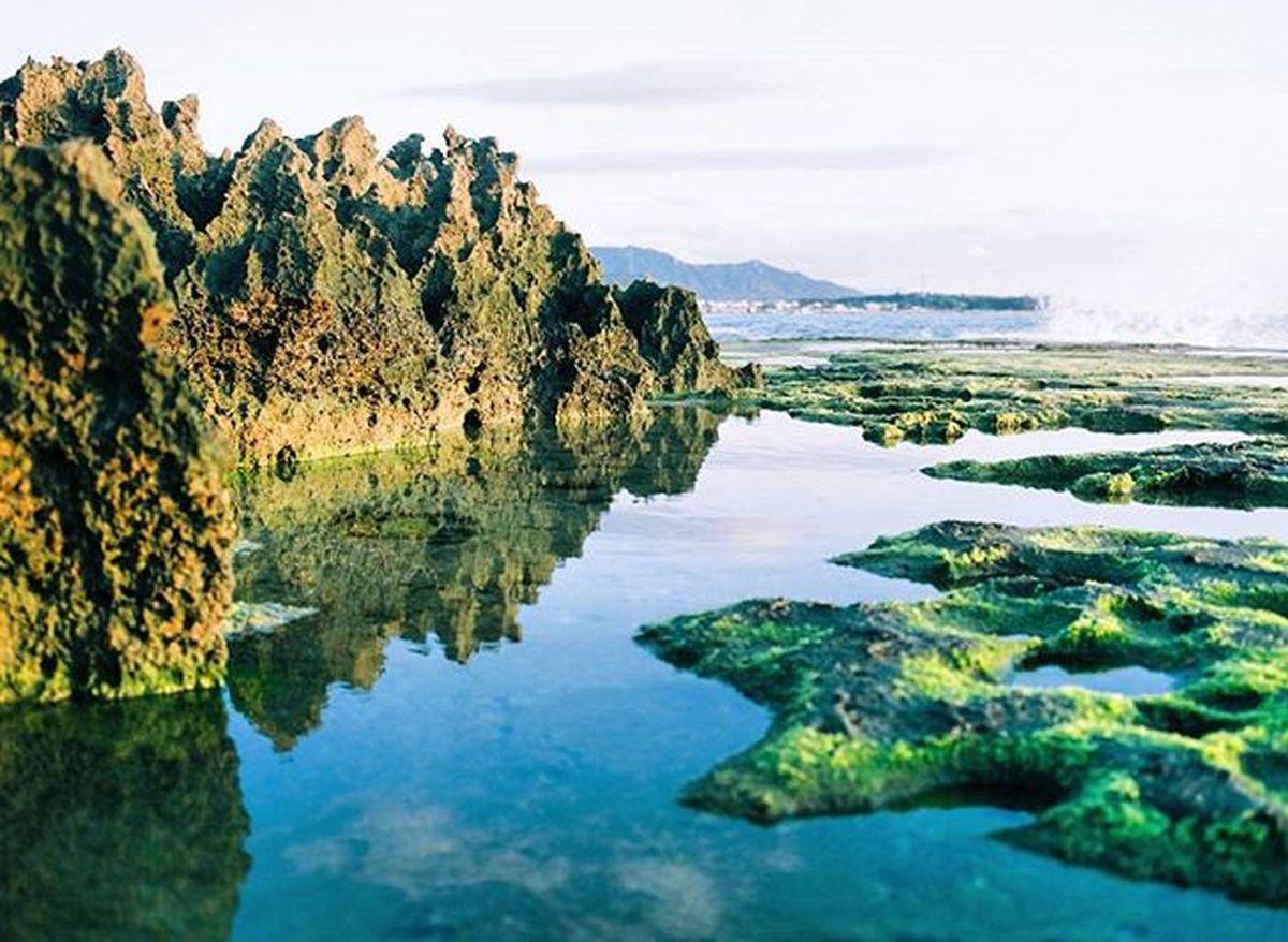 Beautiful place... Analogphoto Analoguephotography Analogue Analogcamera Film Filmphotography Filmisnotdead Ishootfilm Istillshootfilm MAMIYA645 Medium Mediumformat 120mm Filmcamera Fujifilm 160ns NinhThuan Vietnam