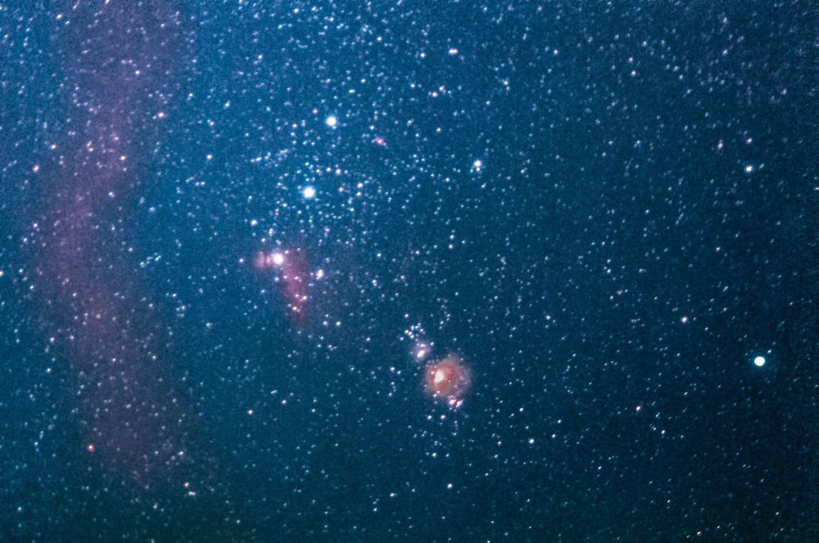 A plethora of luminance in the pearlsnaps of Orion Astronomy Night Constellation Outdoors Long Exposure Longexposure Sky Nightphotography Night Photography Cosmos Astrophotography Nebula Orions Belt Horsehead Nebula Star - Space Orion Orion Nebula Heavens Above Space