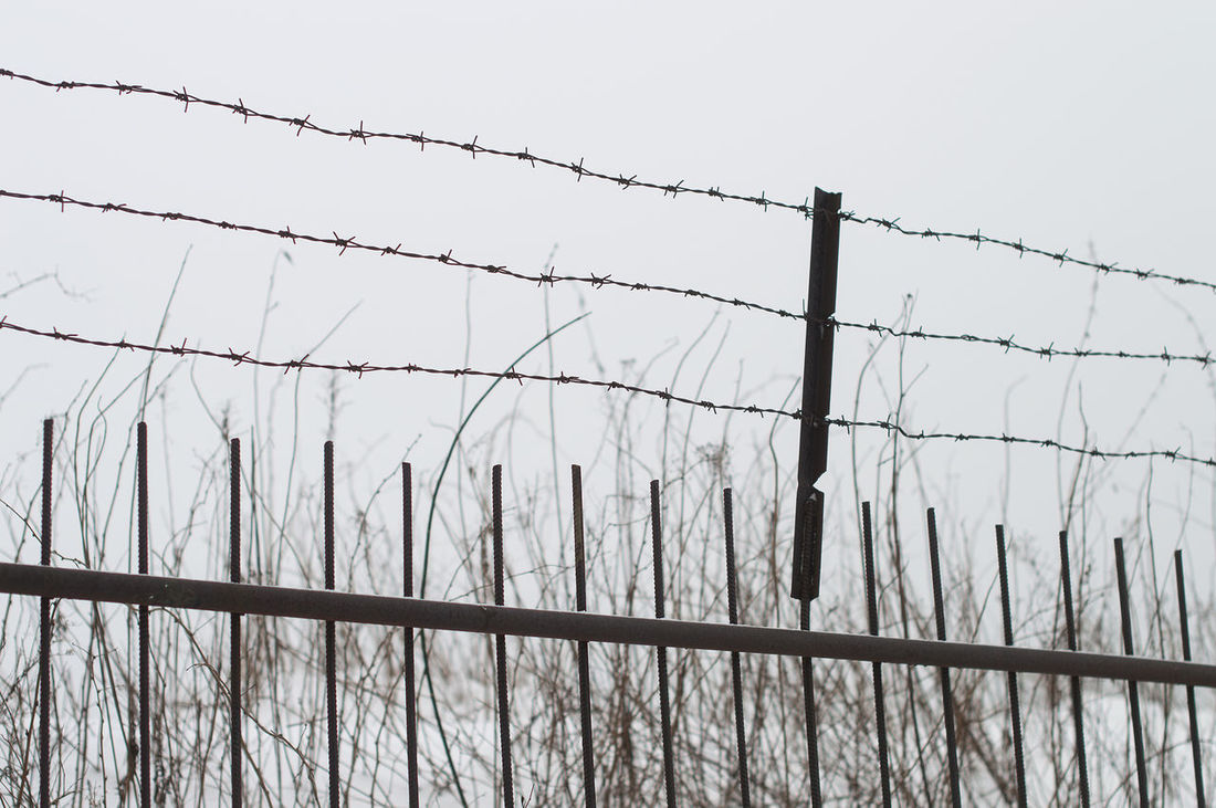 Barbed wire fence Barbed Wire Barricade Boundary Danger Day Exclusion Fence Forbidden Metal No People Outdoors Prison Prison Bars Prisoner Protection Razor Wire Safety Security Security System Separation Sharp Sky Spiked Trapped Wire EyeEmNewHere Minimalist Architecture Resist