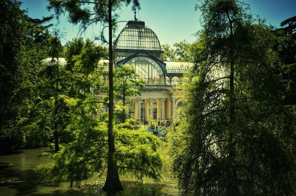 Tree Architecture Dome Travel Destinations Built Structure Day Politics And Government Water Outdoors Sky No People Madrid Architecture El Retiro, Madrid