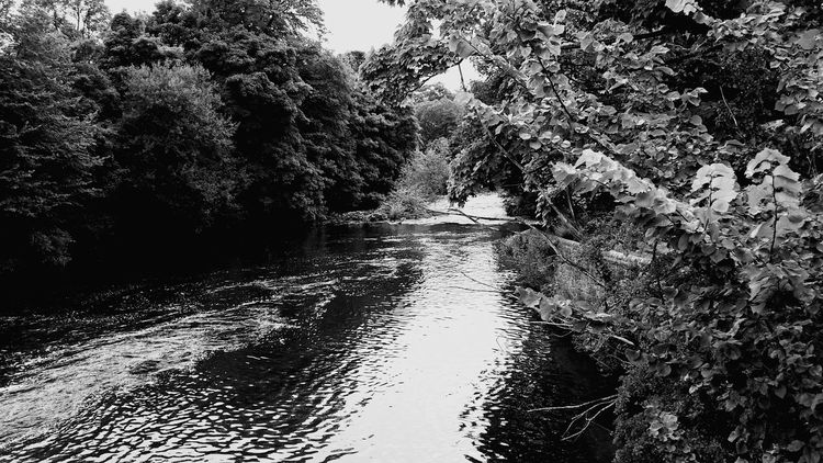 Water_collection River View Black And White