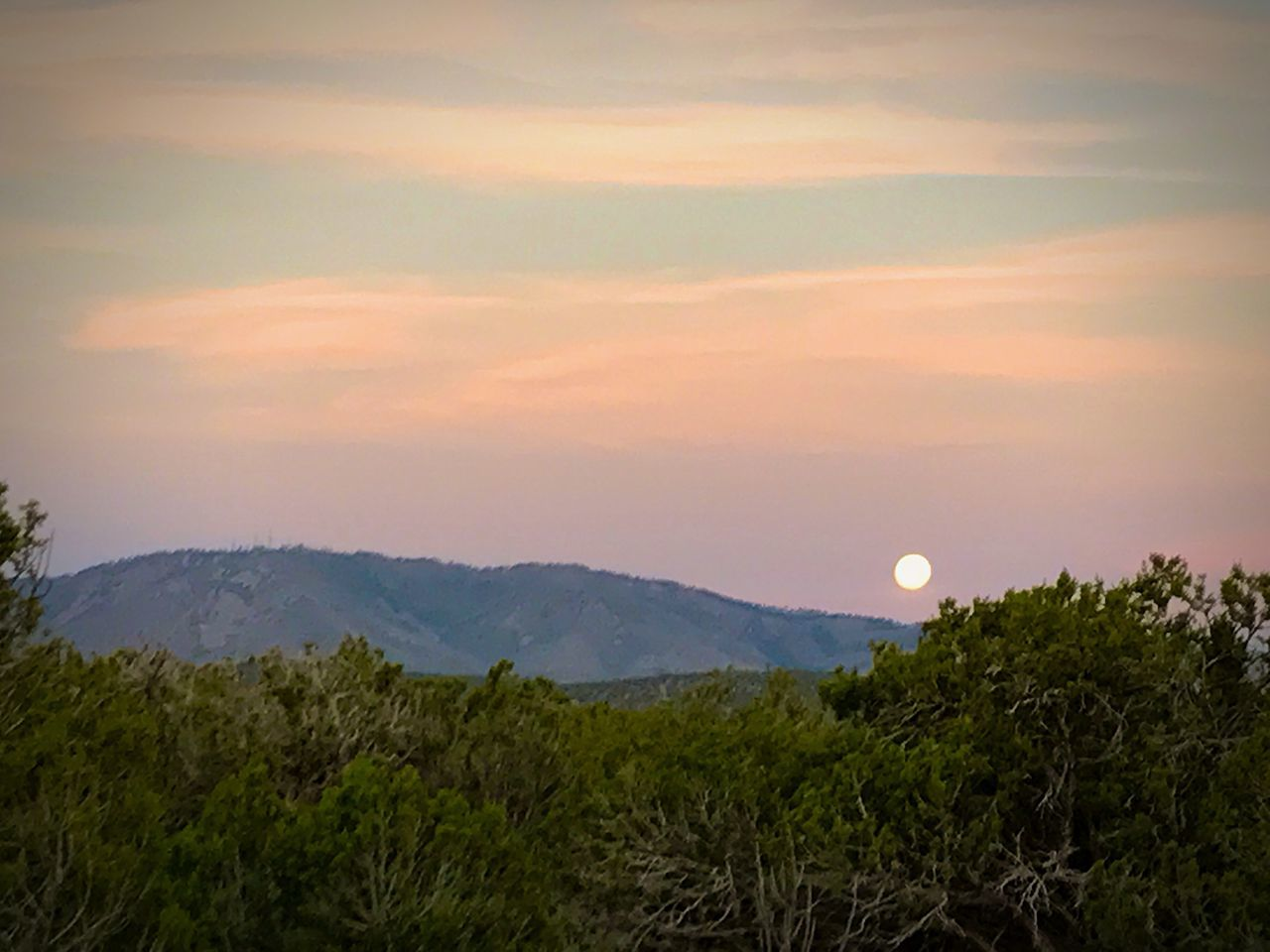 sunset, nature, beauty in nature, scenics, tranquil scene, tranquility, moon, landscape, mountain, sky, no people, outdoors, sun, tree, growth, grass, day, astronomy
