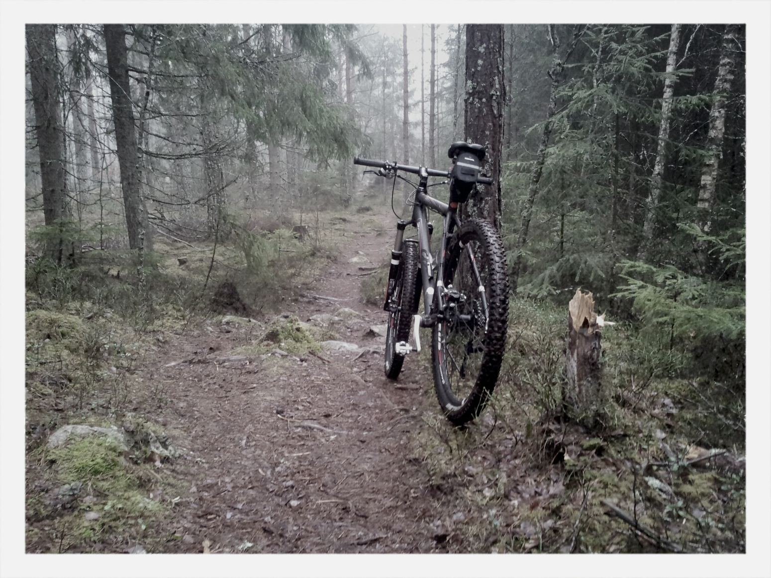 Managed to squeeze in a MTB ride today. Enjoying Life
