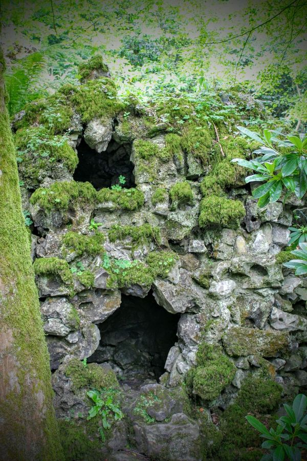 Secret Garden Secret Places Secretwindow Hole In The Wall Rock Stone Wall Greenery Nature Nature Photography Nature_collection Somewhere Special A Piece Of History Going For A Walk Hidden Beauty
