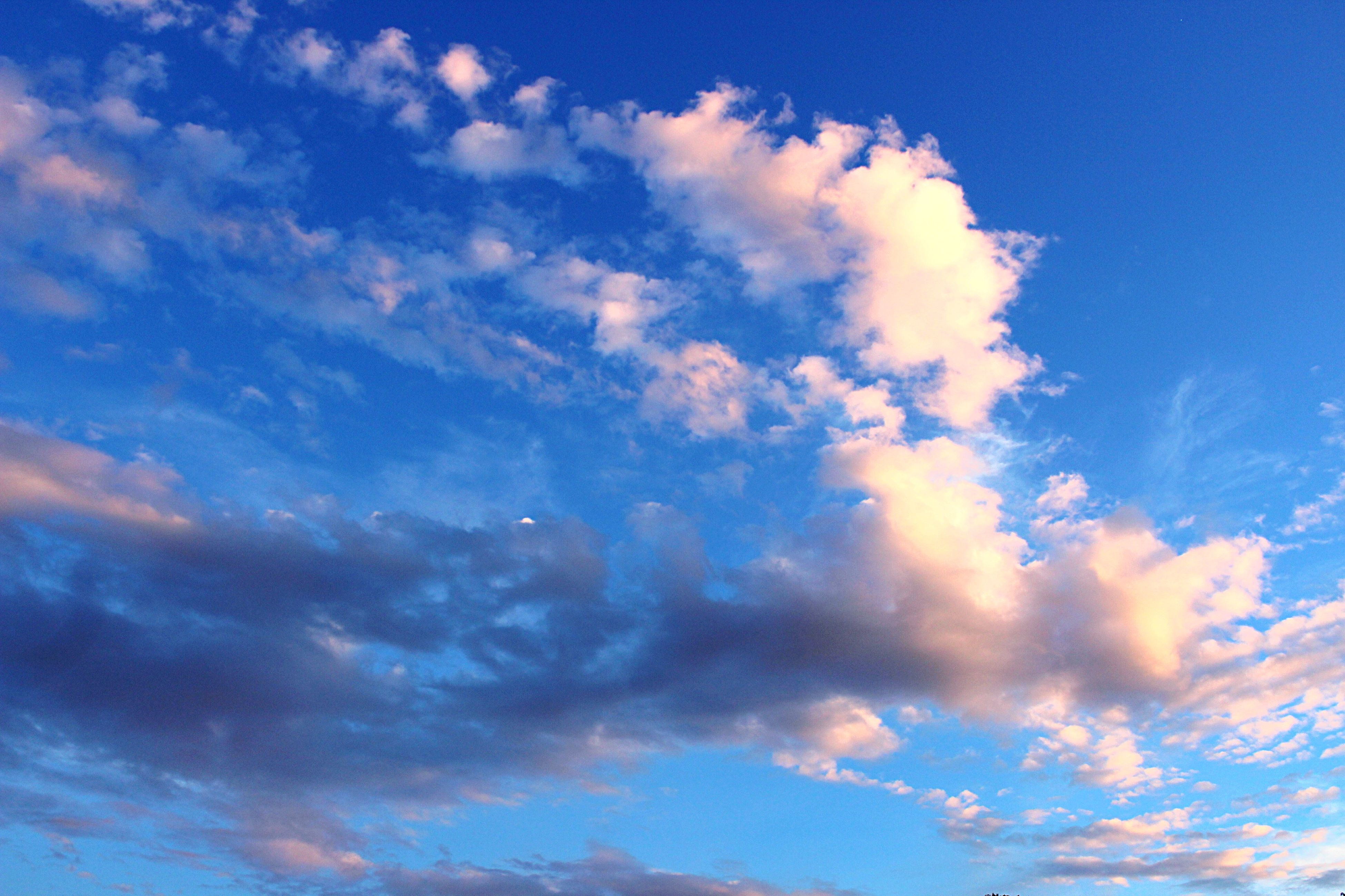 sky, blue, low angle view, cloud - sky, beauty in nature, tranquility, scenics, sky only, tranquil scene, nature, cloud, cloudscape, cloudy, backgrounds, idyllic, majestic, full frame, outdoors, no people, sunlight