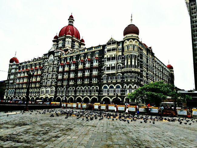 Built Structure Architecture Cloud Day Scenics Arch MumbaiDiaries Mumbaiphotography Taj Hotel Mumbai