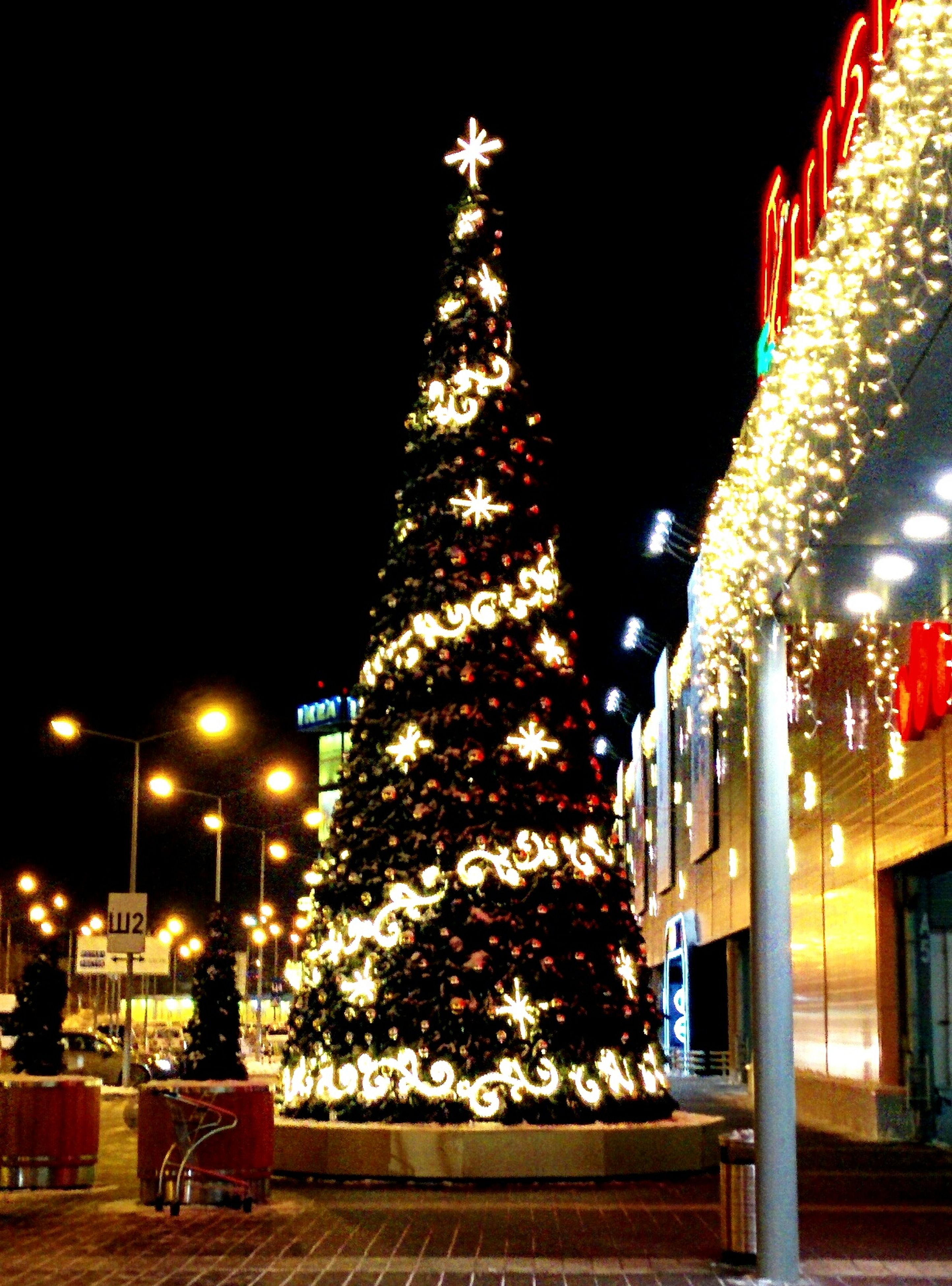 illuminated, night, lighting equipment, decoration, architecture, built structure, building exterior, tree, christmas, celebration, christmas decoration, low angle view, street light, tradition, religion, hanging, christmas lights, lantern, christmas tree, electric light