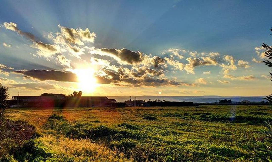 Awesome Sicily... Sun Clouds Sky Blue Bluesky Garden Camp Coltivation Sunshine Sunset Panoramic Igers Igerssiracusa Siracusa Igerssicily Sicily Igersitay Italy Passion Naturelovers Nature Instapic Instadaily Instamoment Picoftheday shotoftheday dailyphoto