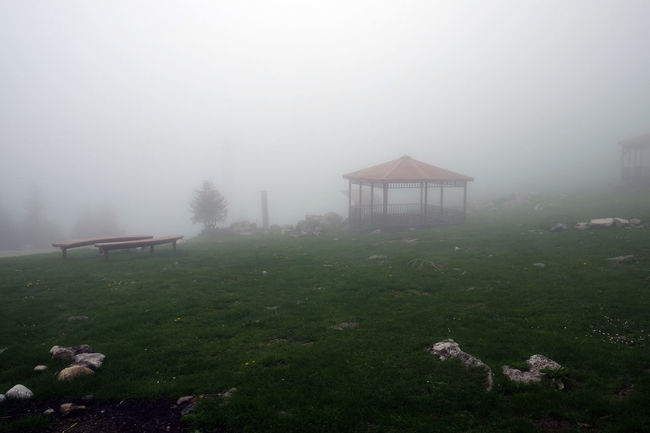 Foggy picnic place in Ayder National Park at the turkish Black Sea Mountains Ayder Ayder Yaylası Foggy Day Foggy Landscape Foggy Morning Foggy Weather Hikers' Cabin Hiking Hiking Adventures Hiking Trails Hiking Trip Hut Kackar National Park Kanckar National Park Kaçkar Mountain Kaçkardağları Nature Landscape Nature Landscape Mountain Nature Photography Naturelovers Picnic Place Resting Place Wodden Hut