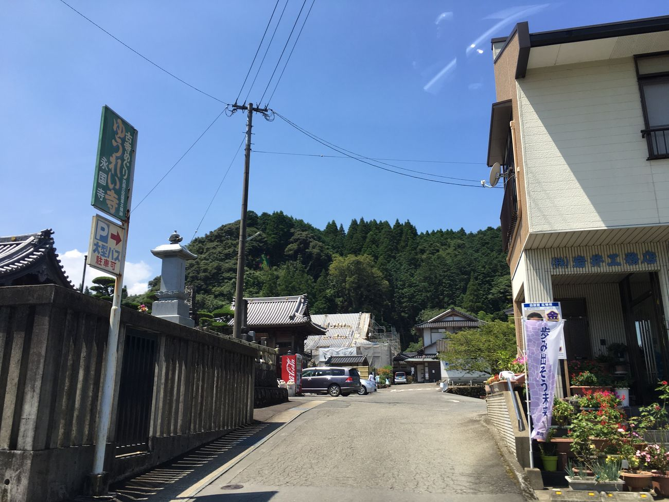 山の中に幽霊が|///|・ω|///| Driving Ghost Sunny Day Nature Photography Kumamoto