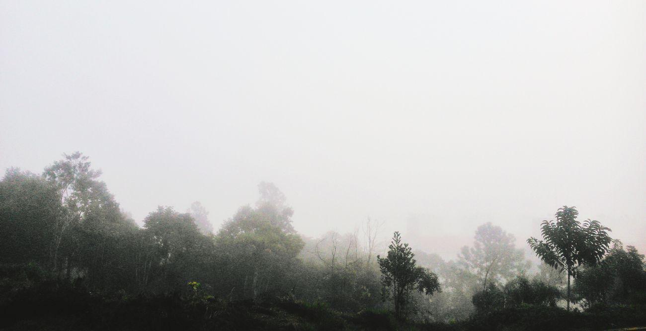 Por incrível que pareça eu adoro esse tempo nublado. Choveville Chuva Cobertas Chocolatequente