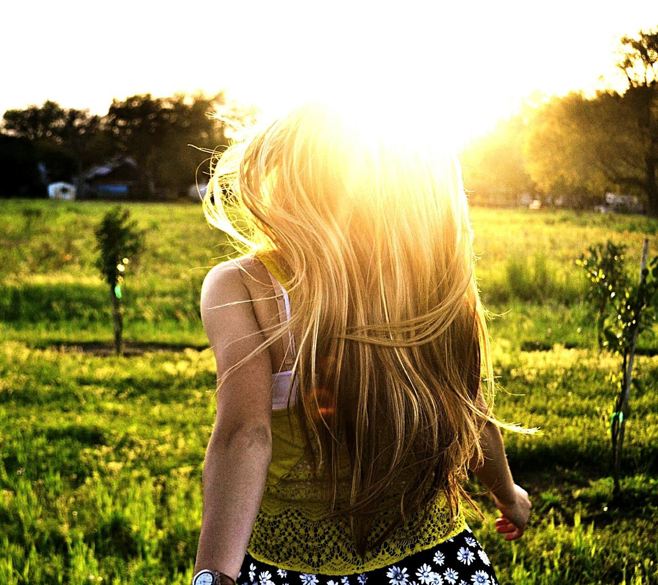 blond hair, grass, long hair, one person, rear view, field, focus on foreground, nature, outdoors, leisure activity, sunlight, real people, young adult, day, sunset, tree, young women, one woman only, people, sky, adult