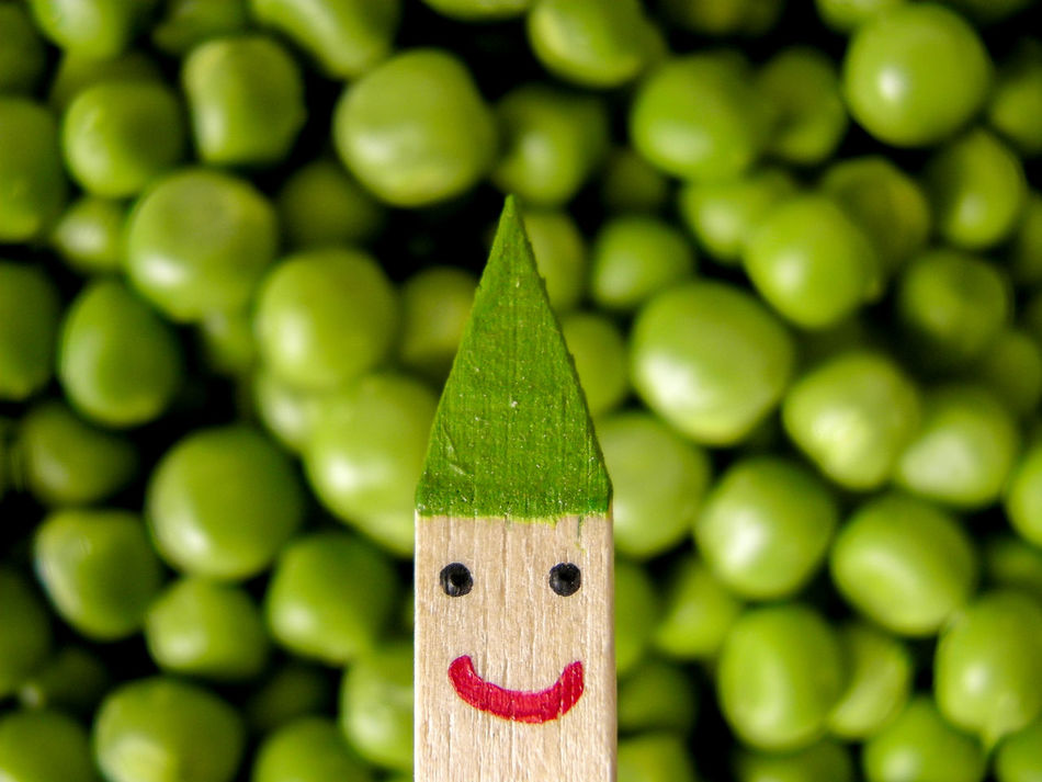 Awareness Character Close-up Eat More Vegetables Feeling Green Focus On Foreground Fresh Freshness Go Green Green Green Color Green Green Green!  Green Hat Happy Happy Vegan Health Healthy Eating Healthy Lifestyle Nature No People Peas Smile Stylized Vegan Vegetable
