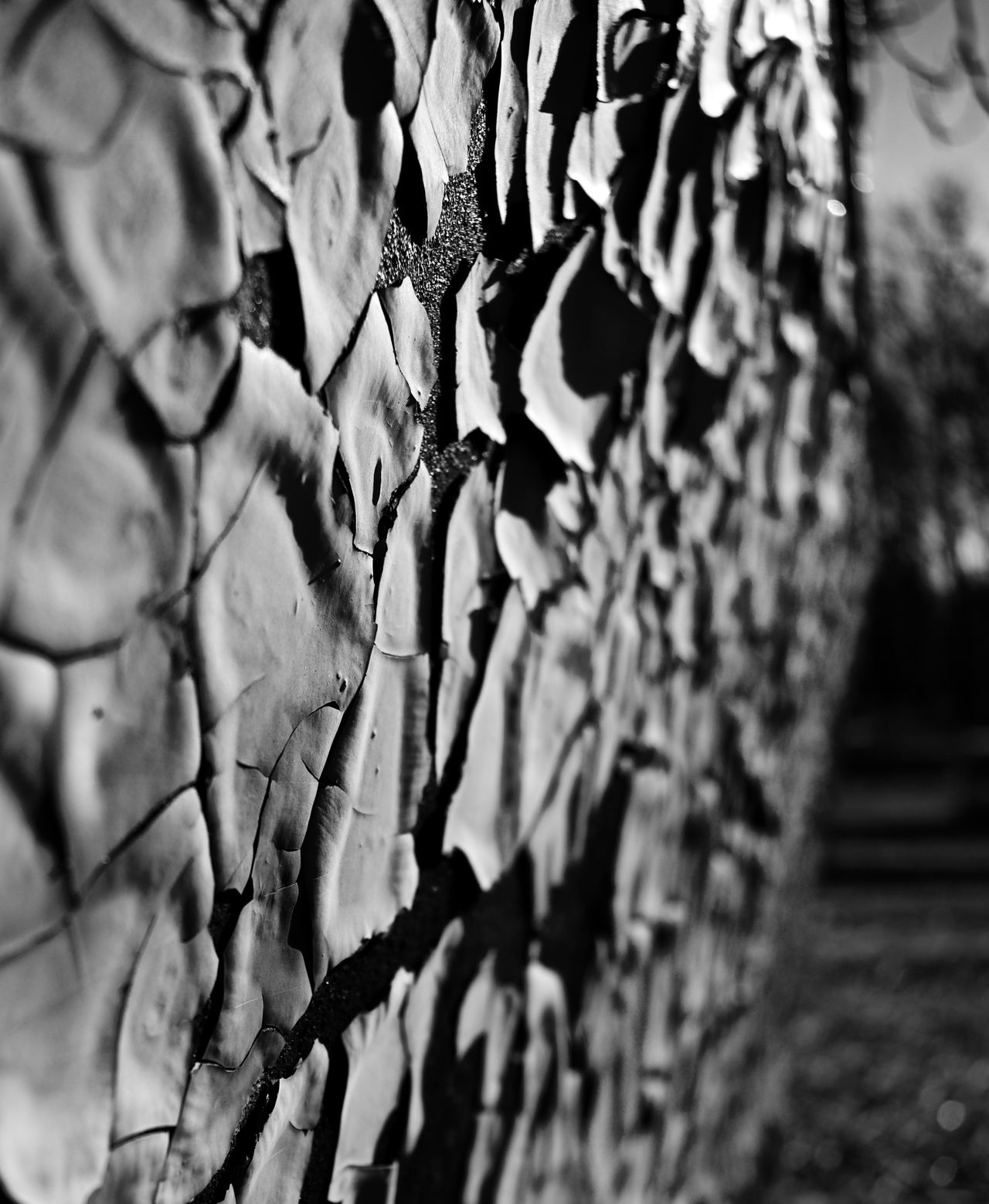 Selective Focus No People Day Close-up Outdoors Peeling Paint Old Vintage Train Bnw_collection Black & White Black And White Blackandwhite Scenics Nj