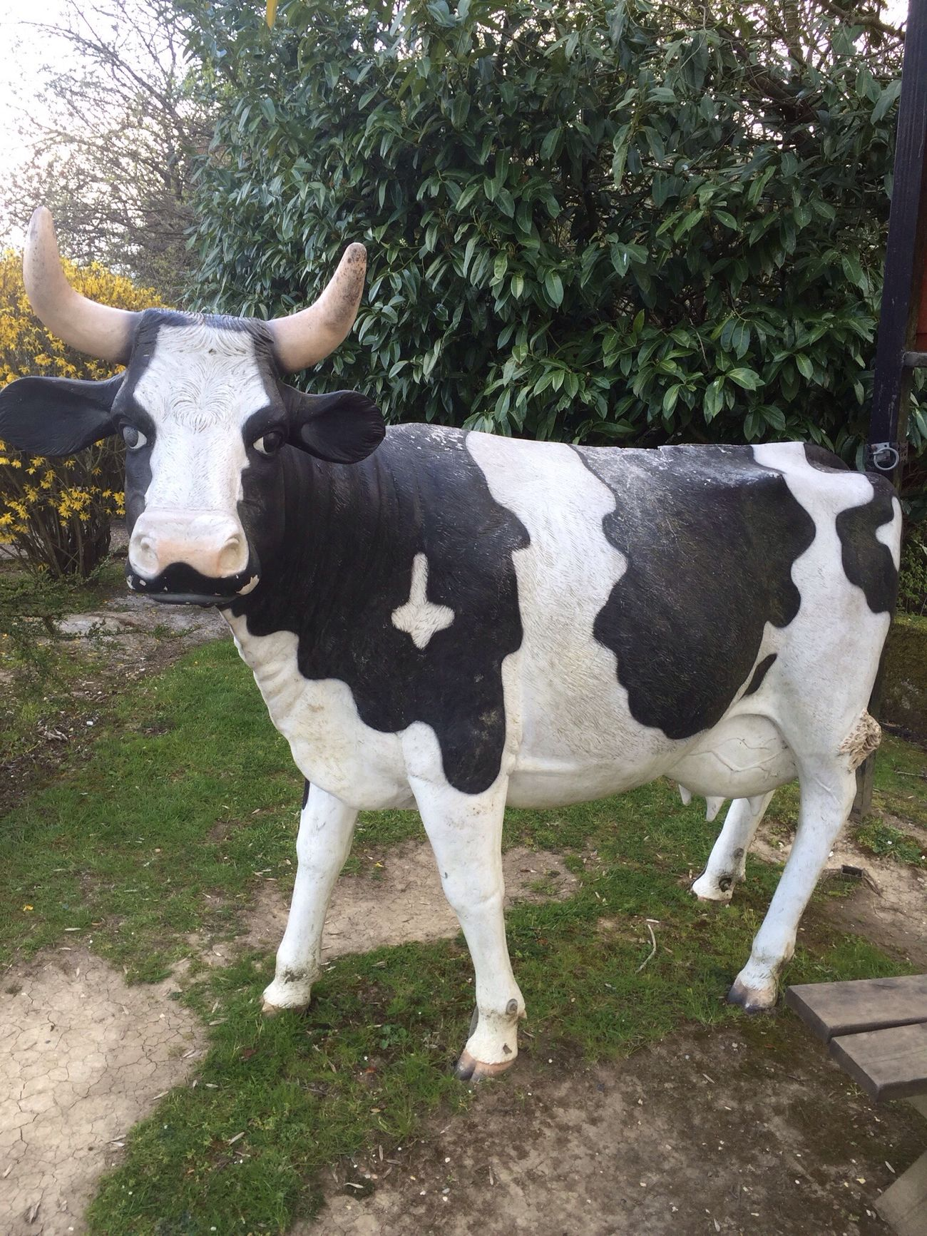 Especially for Nefelibata @markmyword In England we have REAL plastic cows!!!! So there!!!!!