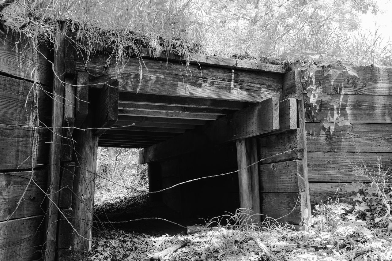 Visual Journal June 2017 Thayer County, Nebraska Abandoned B&w B&w Photography Barbed Wire Bridge Bridge - Man Made Structure Built Structure Camera Work Everyday Lives EyeEm Best Shots EyeEm Gallery Fufjifilm X100S FUJIFILM X-T1 Getty Images Nature No People Old Bridge Outdoors Photo Diary Photo Essay Rural America Small Town Stories Under The Bridge Visual Journal Wood - Material
