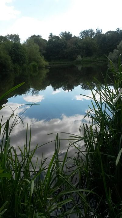 Reflection Water Sky Lake Nature Tree Outdoors Grass Scenics No People Green Color Reflection Lake Beauty In Nature Cloud - Sky Beautiful England Pretty Places EyeEmNewHere Tranquility Peaceful View Nature Clouds And Sky Clouds Beauty In Nature Peace And Quiet