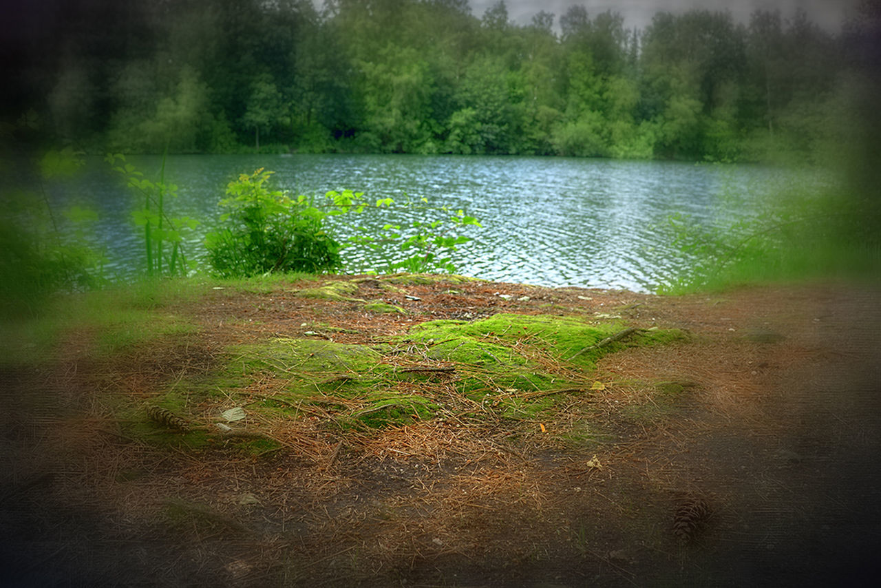 Beauty In Nature Day Grass Green Color Idyllic Lake Lakeshore Landscape Meer Nature Non Urban Scene Non-urban Scene Outdoors Plant Reflection Scenics Sea See Standing Water Tranquil Scene Venekotensee Wasser Water