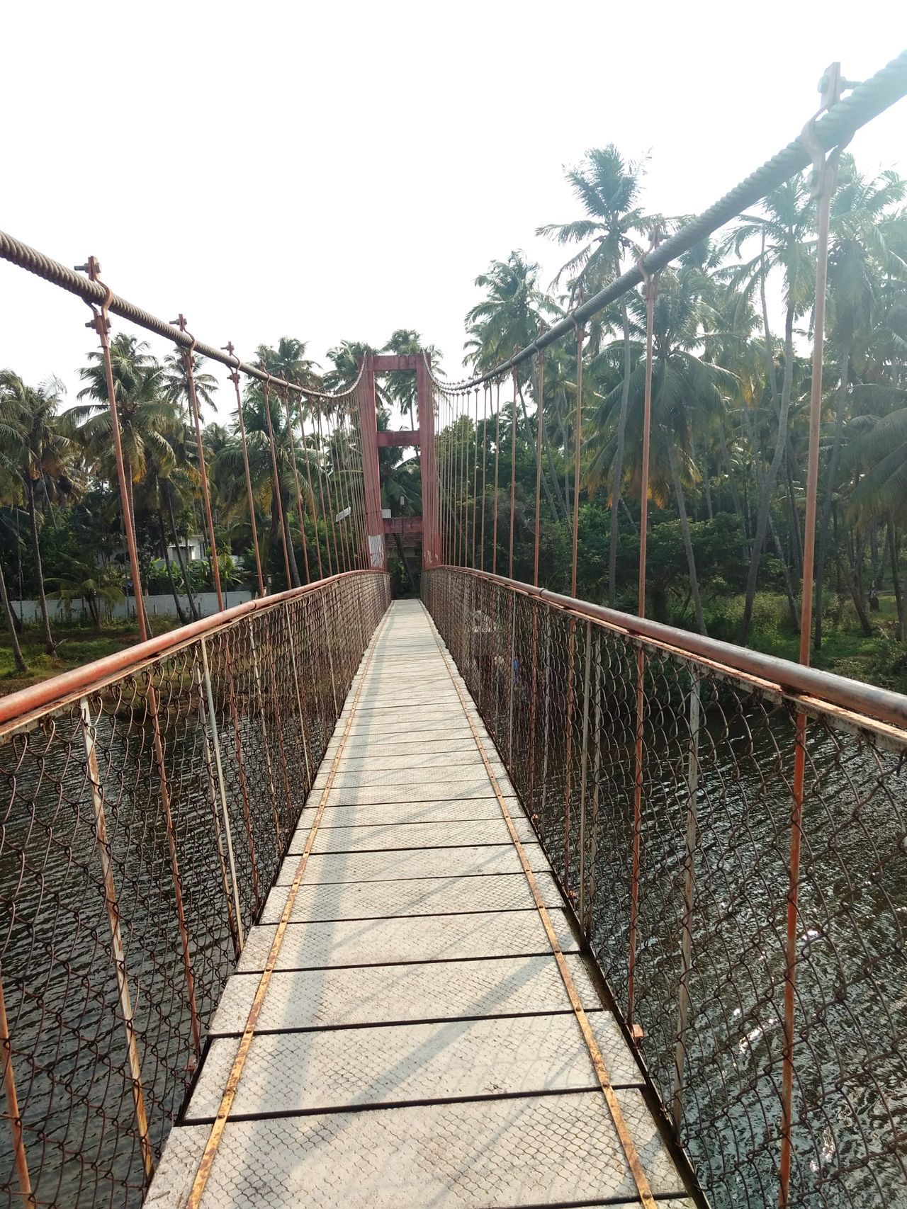 Suspension Bridge Water River Greenarrow Nature Daylight Planks Happiness Trees Tranquility Picturisque No People Outdoors Live For The Story The Great Outdoors - 2017 EyeEm Awards The Architect - 2017 EyeEm Awards EyeEmNewHere BYOPaper!