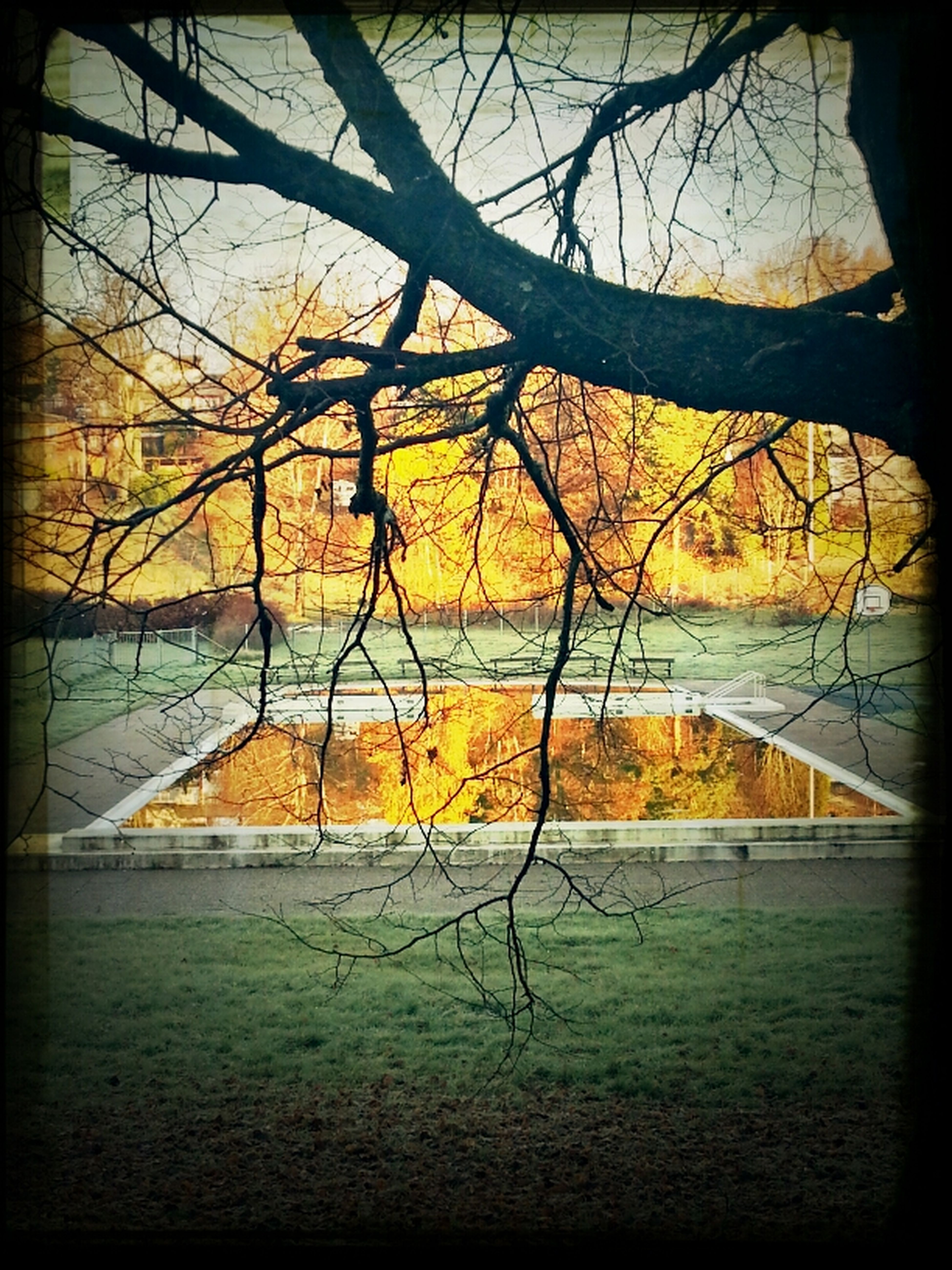 November Swim.