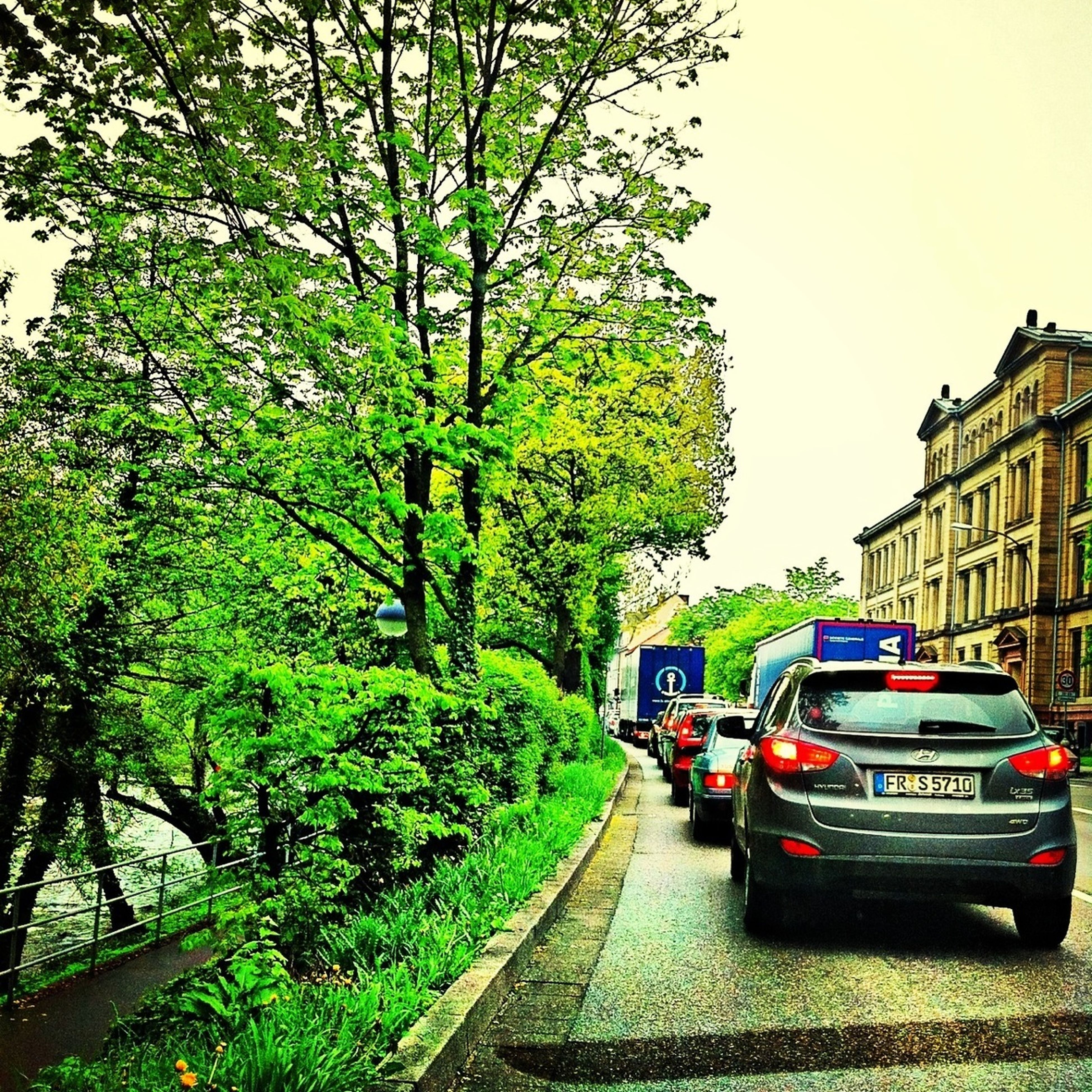 transportation, tree, land vehicle, car, mode of transport, the way forward, architecture, road, built structure, building exterior, street, diminishing perspective, clear sky, incidental people, on the move, vanishing point, city, day, travel, outdoors