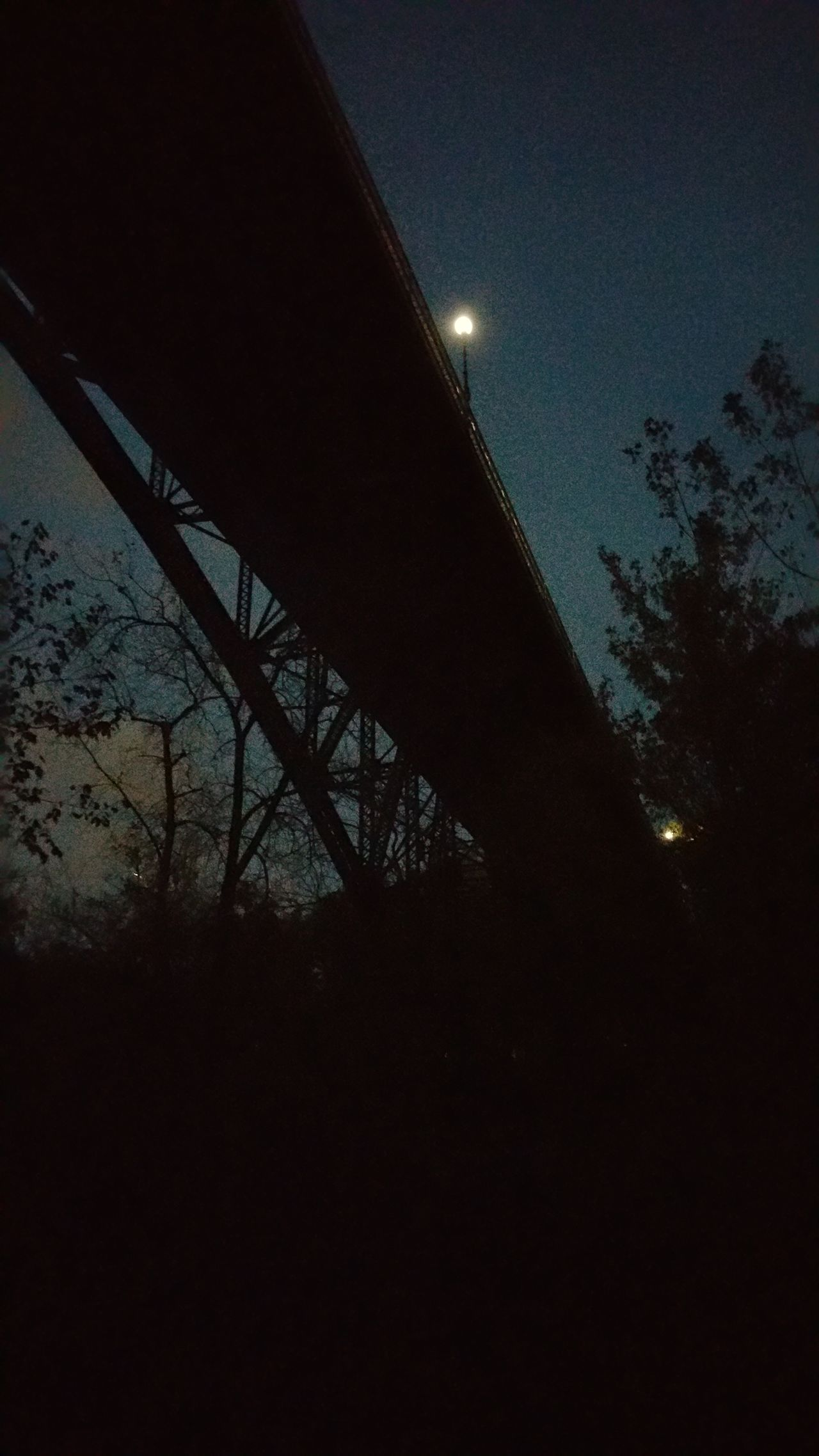 Minnehaha Falls Park Bridge Blue evening dusk sunset Low Angle View Silhouette Architecture Built Structure Tree Night Moon Dusk Dark Sky Bare Tree Building Exterior Growth Plant Bridge - Man Made Structure Outdoors Outline Engineering Below Nature