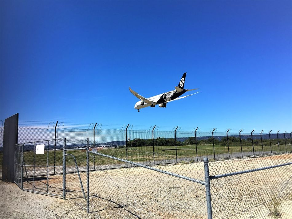 Transportation Road Plane Perth Airport Outdoors No People Low Flying Landing Jet Engine Jet Industry Hello World Flying Flight Day Boeing 787 Boeing Airport Runway Aircraft Airplane Air New Zealand Aerospace Industry Aeroplane Air Vehicle Blue