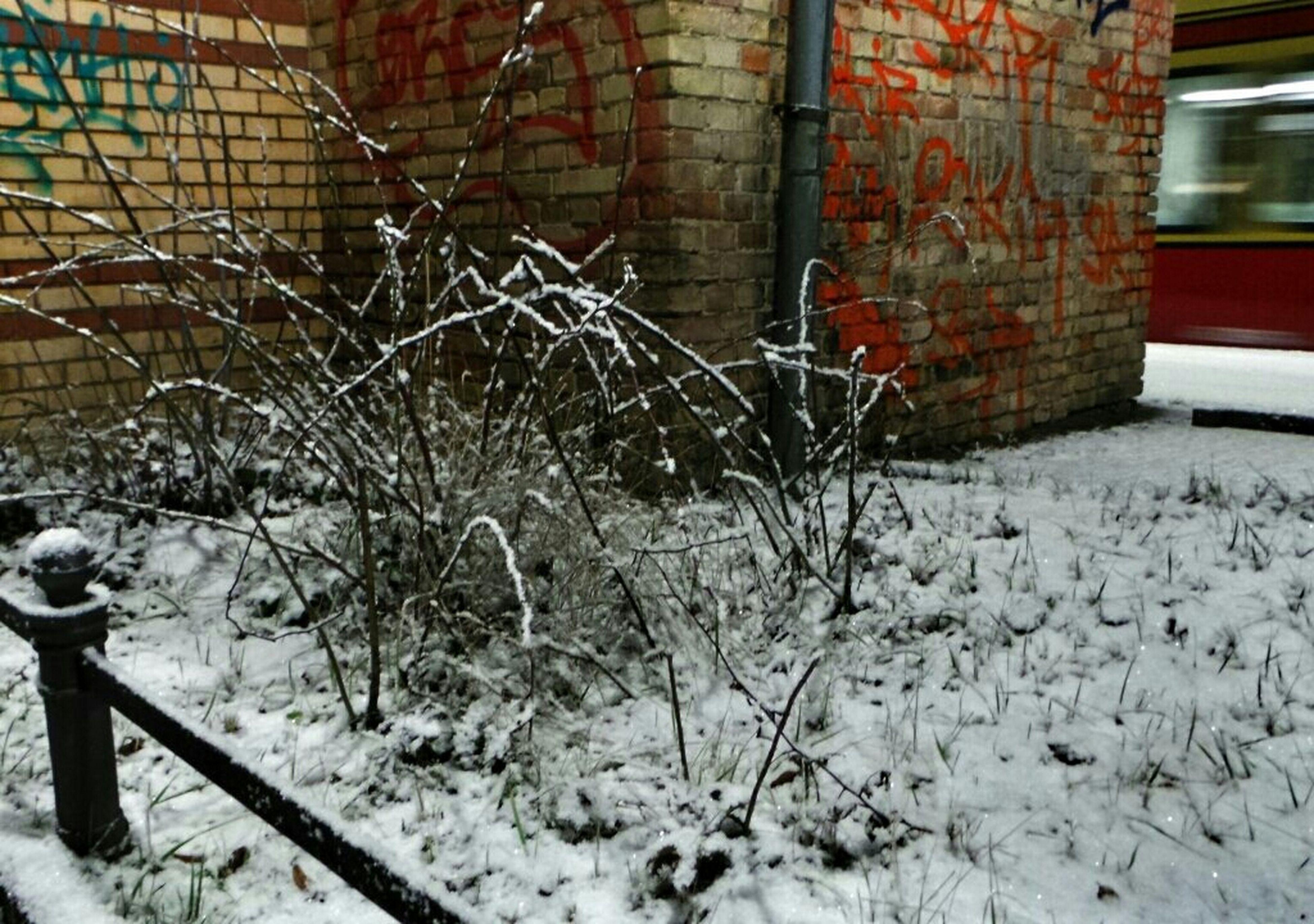 Winter New White Over Night ...