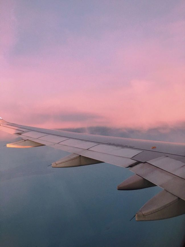 The Journey Is The Destination Nature Photography Plane Hi! Sky Pink Blue Clouds Photography Likeforlike Summer Views VSCO Relax Sun Nature Random Follow VSCO Cam Tumblr Canon Sky Singapore Spam