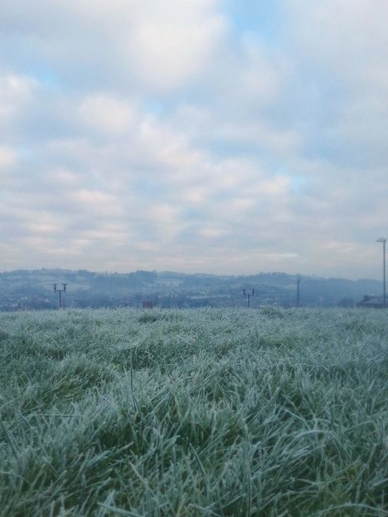 A Frosty day... Newtown Powys Grass Town Frost Hills Clouds иней туман Foggy Morning