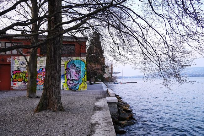 Lakeside From My Point Of View Showcase March Urban Landscape Zürich Rote Fabrik Graffiti Streetart