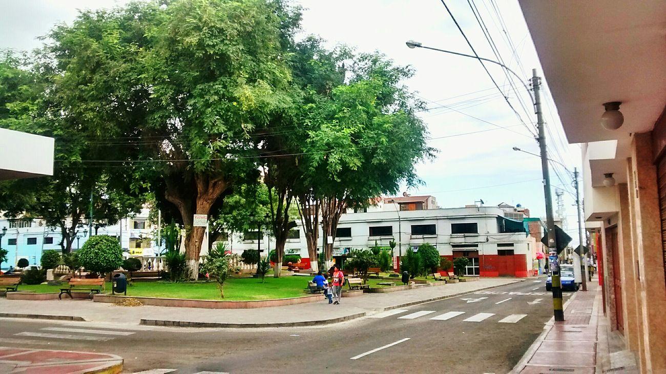 Vista de la Plaza Zela - Tacna Walking Around Street Life Park Urban Photography