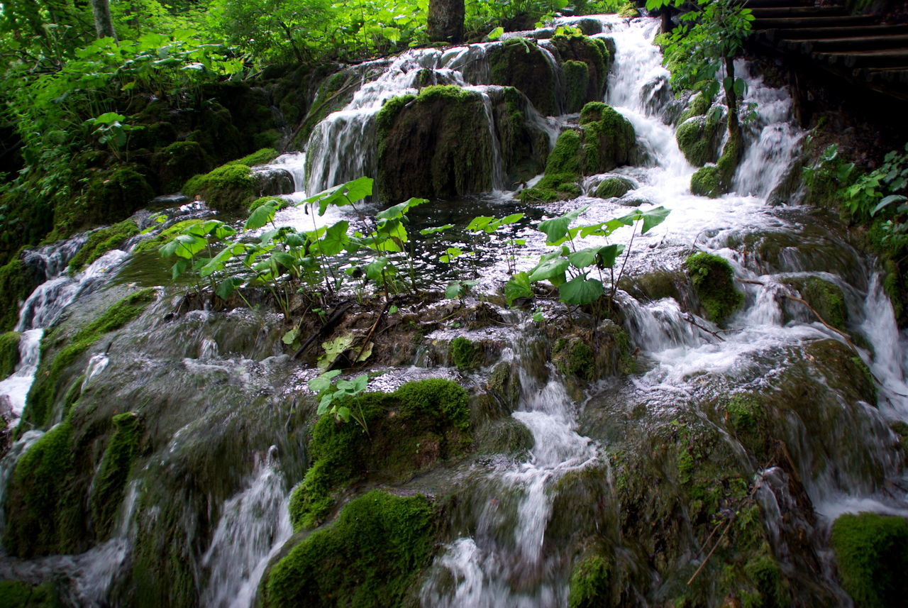 Plitvička jezera Beauty In Nature Beauty Of Water Environment Environmental Conservation Fast Water Fast Water Flows Focus On Shadow Freshness Green And Water Green Color Long Exposure Lush Foliage Motion Water Natural Park Plitvicka Jezera Power In Nature Rapid Stream - Flowing Water Travel Destinations Water Water Reflection Water Scenic Waterfall Waterfall_collection Waterfront