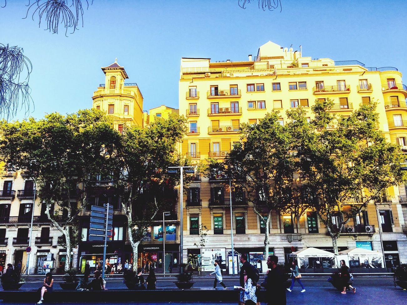 Plaça Universitat. Streetphotography City Life Moving Summertime June 2016 Mycity