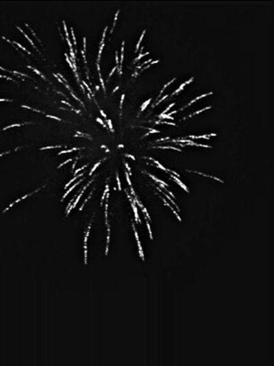 Fireworks Firework Blackandwhite Black And White Black & White Blackandwhite Photography Black&white