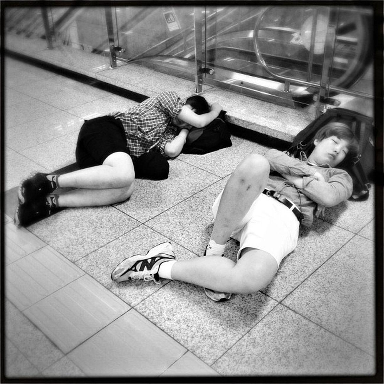 #korea #seoul_korea #gangnam #expressbusterminal #sleeperz #people #street #sleeping #travel Street People Sleeping Travel Korea Gangnam Seoul_korea Sleeperz Expressbusterminal