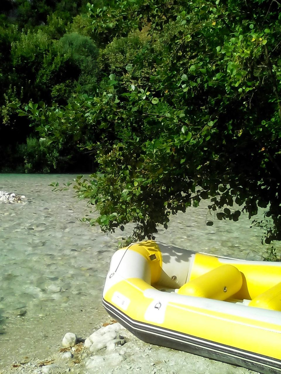 yellow, nautical vessel, tree, water, day, pedal boat, transportation, no people, nature, outdoors, moored, kayak