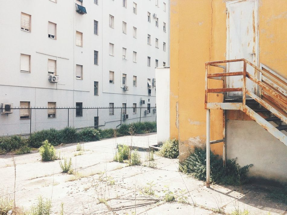 Beautiful stock photos of weed, , Apartment, Architecture, Brescia