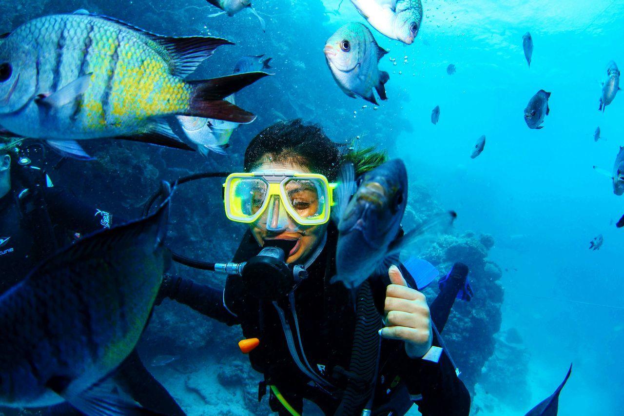 Beautiful stock photos of underwater, 20-24 Years, Adventure, Animal Themes, Animal Wildlife