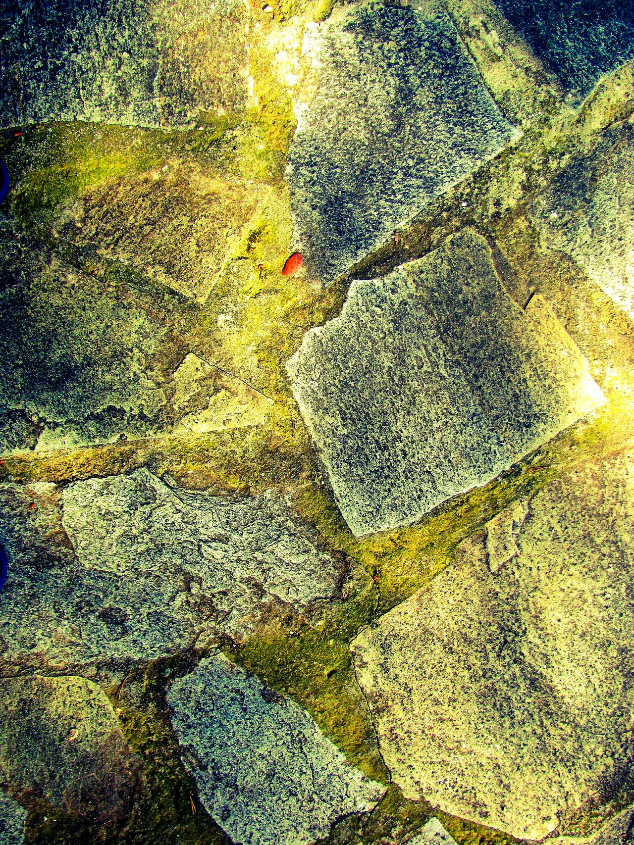 Slab Slabs Granite Stone Stones Yard Tree Shadows Light And Shadow Abstract Pattern Pattern Pieces Pattern, Texture, Shape And Form Patterns & Textures Patterns Architecture The Architect - 2016 EyeEm Awards Structure Structural Pattern Structural Element Pavement Slabs Backgrounds Yard Slabs Pavement Pavement Patterns Pavement Stone Bricks