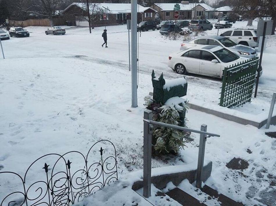 Denver,CO Denver Colorado School Middle School Elementary School Dragon Mailbox Dragon Mailbox Wintertime Winter Winter Wonderland Snow ❄ Ice Snowy Cold Freezing