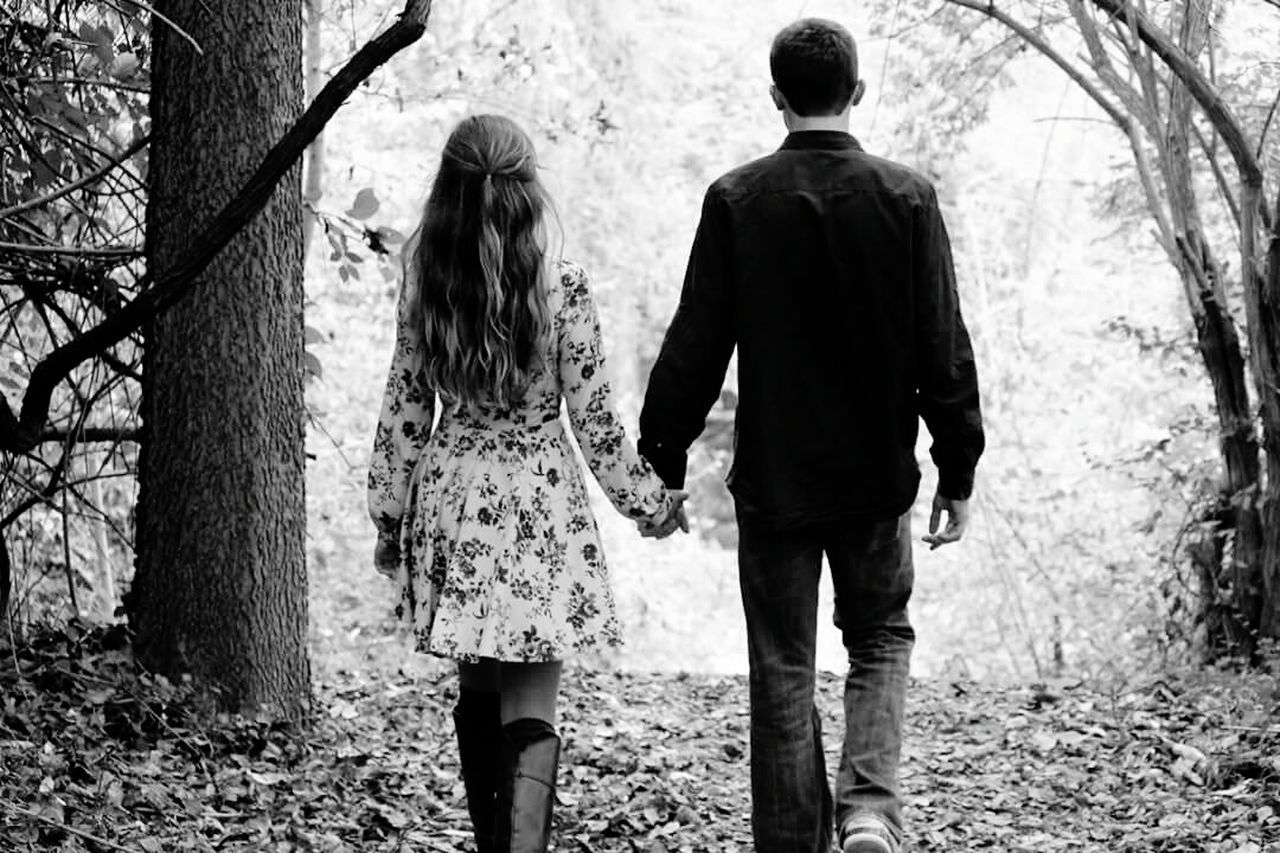 togetherness, two people, rear view, tree, walking, real people, holding hands, love, bonding, day, casual clothing, tree trunk, full length, outdoors, forest, men, nature, adult, people, adults only