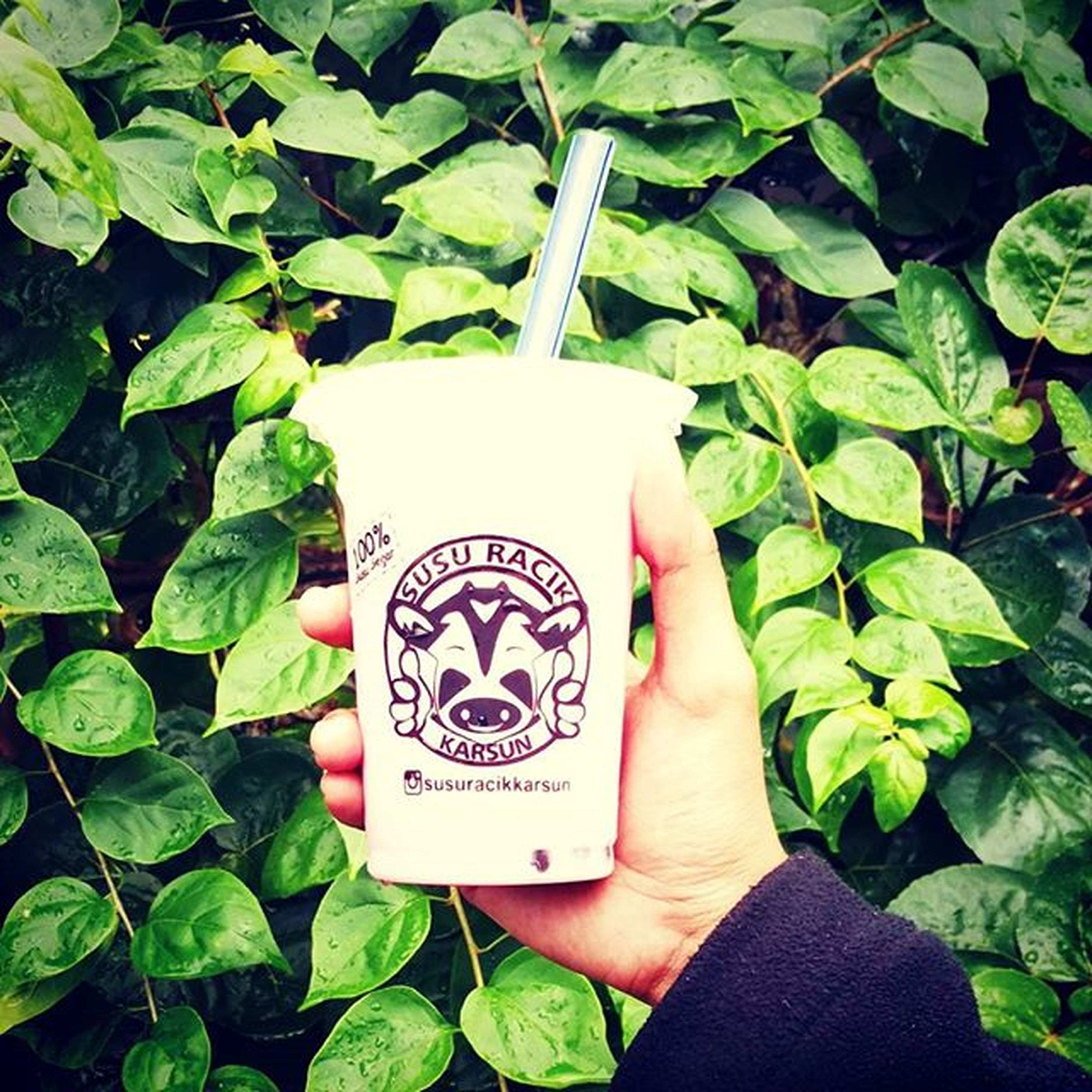 drink healthy mik Milkcow Milkshake✌ Susuracikkarsun Susuracikhitz Mobilephotography